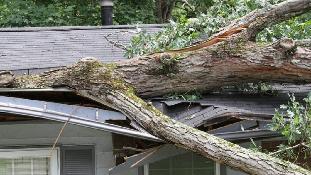 Do You Need Storm Damage Cleanup?